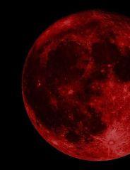 dafcd5dfd6d04a0c0001b5c75b00818d--crimson-peak-blood-moon